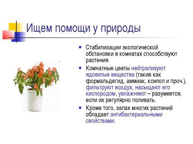 Ищем помощи у природы Стабилизации экологической обстановки в комнатах способ...