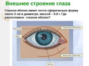 Внешнее строение глаза Глазное яблоко имеет почти сферическую форму около 2 с