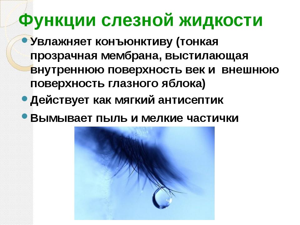 Функции слезной жидкости Увлажняет конъюнктиву (тонкая прозрачная мембрана, в...