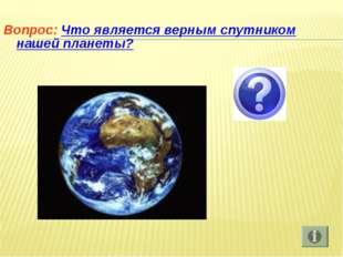 Вопрос: Что является верным спутником нашей планеты?