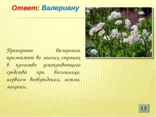 Ответ: Валериану Препараты валерианы применяют во многих странах в качестве