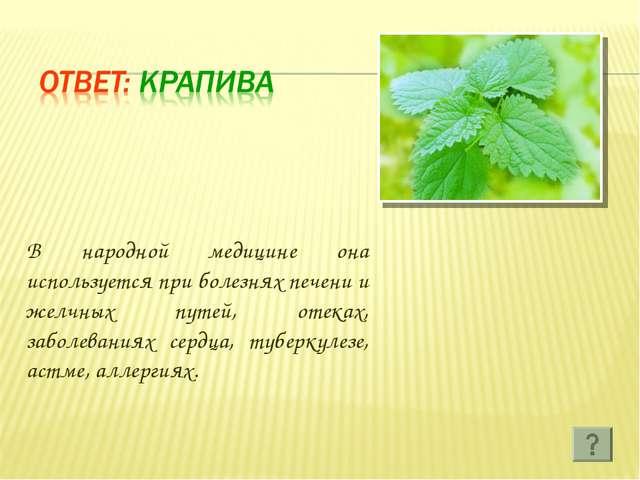 В народной медицине она используется при болезнях печени и желчных путей, оте...