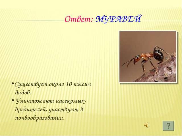 Ответ: МУРАВЕЙ Существует около 10 тысяч видов. Уничтожают насекомых- вредит...