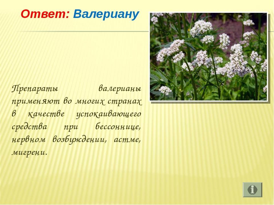 Ответ: Валериану Препараты валерианы применяют во многих странах в качестве...