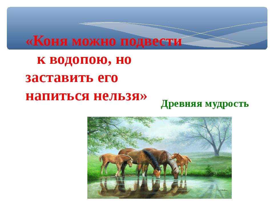 «Коня можно подвести к водопою, но заставить его напиться нельзя» Древняя муд...