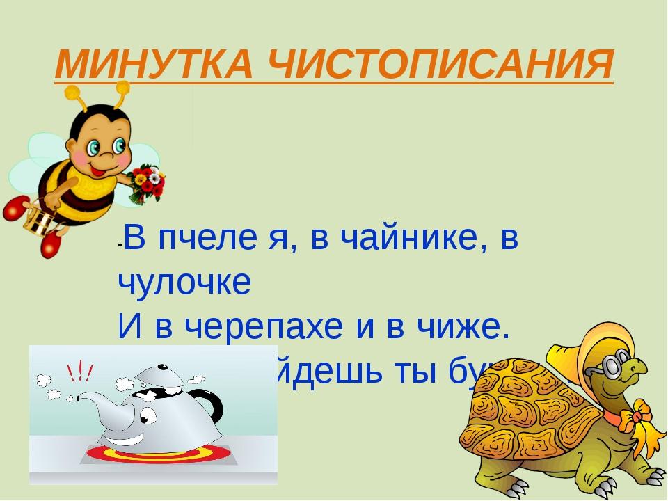 МИНУТКА ЧИСТОПИСАНИЯ -В пчеле я, в чайнике, в чулочке И в черепахе и в чиже....