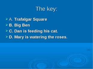 The key: A. Trafalgar Square B. Big Ben C. Dan is feeding his cat. D. Mary is