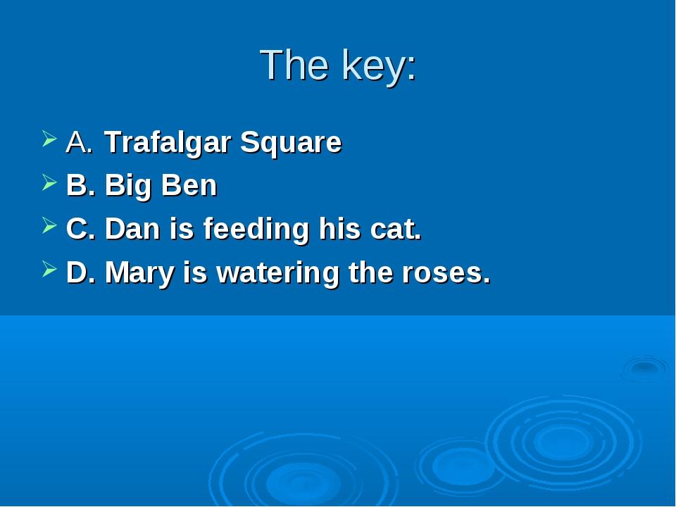 The key: A. Trafalgar Square B. Big Ben C. Dan is feeding his cat. D. Mary is...