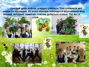 Каждый день пчёлки усердно учились. Они собирали всё новое по крупицам. Из э