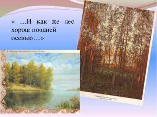 « …И как же лес хорош поздней осенью…»