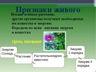 Признаки живого Энергия Солнца Растение Растительноядное животное Хищник 1 по