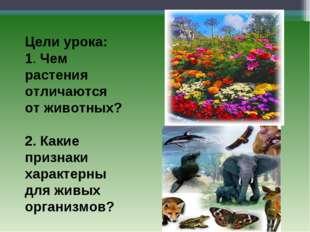 Цели урока: 1. Чем растения отличаются от животных? 2. Какие признаки характ