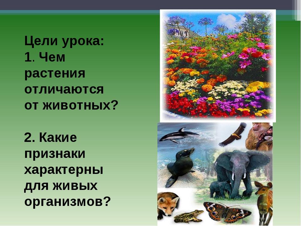 Цели урока: 1. Чем растения отличаются от животных? 2. Какие признаки характ...