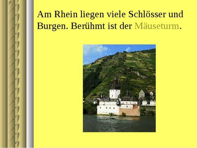 Am Rhein liegen viele Schlösser und Burgen. Berühmt ist der Mäuseturm.