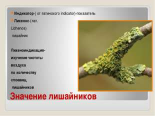 Значение лишайников Индикатор-( от латинского indicator)-показатель Лихенос-(