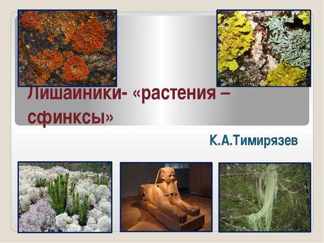Лишайники- «растения – сфинксы» К.А.Тимирязев