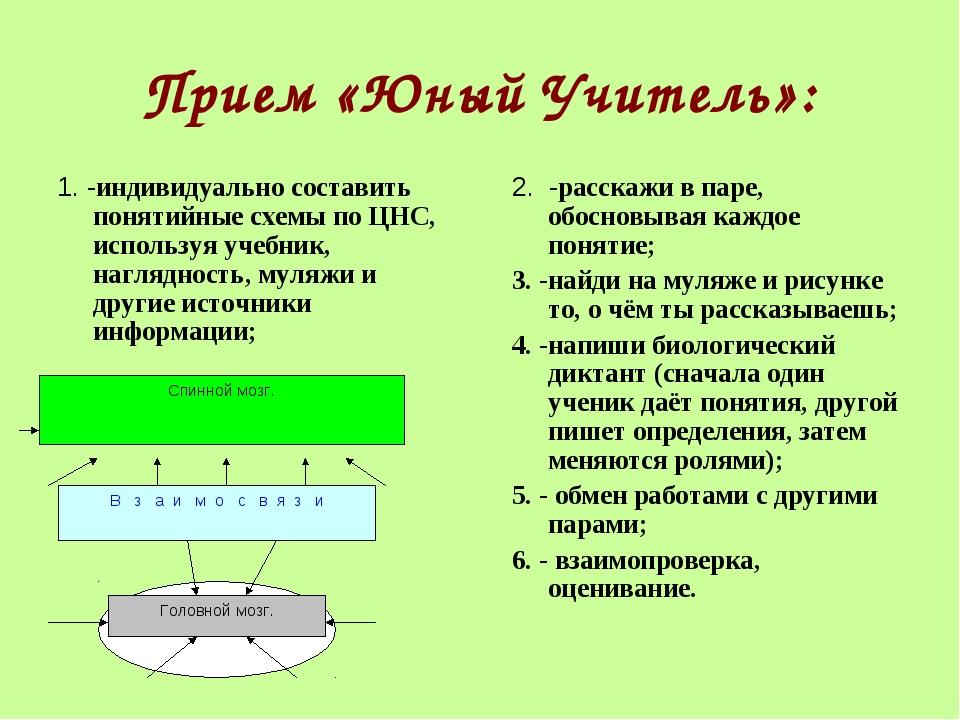 Прием «Юный Учитель»: 1. -индивидуально составить понятийные схемы по ЦНС, ис...