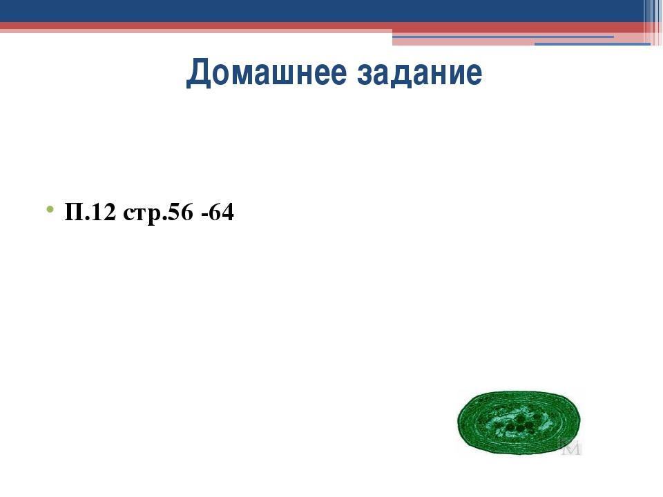 Домашнее задание П.12 стр.56 -64