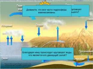 Чем отличается малый круговорот воды в природе от большого? Какую роль в круг