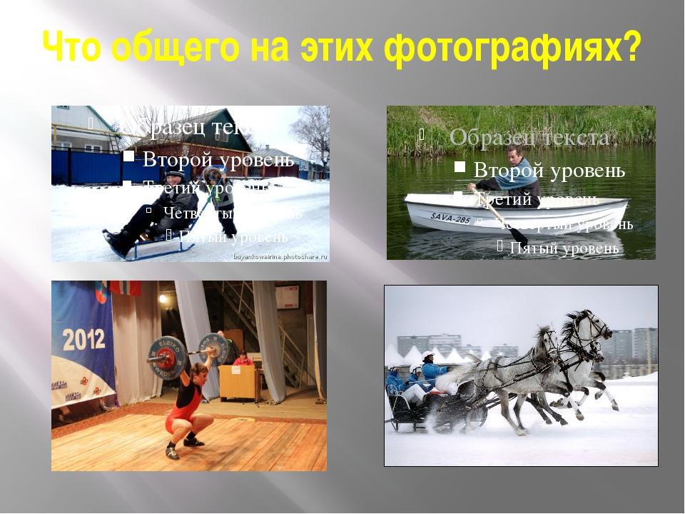 Что общего на этих фотографиях?