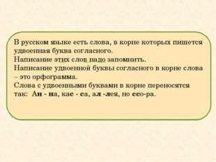 В русском языке есть слова, в корне которых пишется удвоенная буква согласног