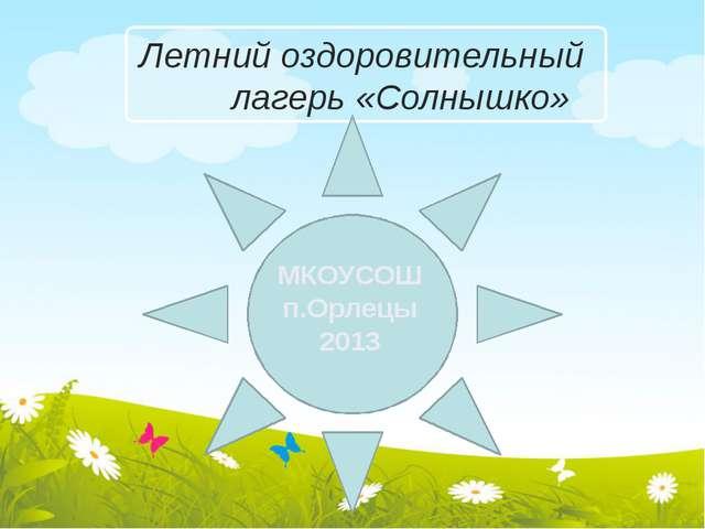 Летний оздоровительный лагерь «Солнышко» МКОУСОШ п.Орлецы 2013