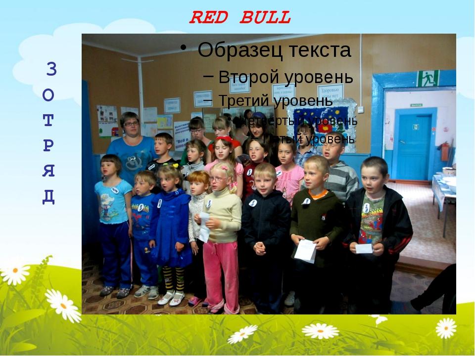 RED BULL 3 О Т Р Я Д