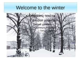 Welcome to the winter