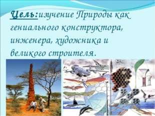 Цель:изучение Природы как гениального конструктора, инженера, художника и вел