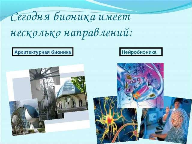 Сегодня бионика имеет несколько направлений: Архитектурная бионика Нейробионика