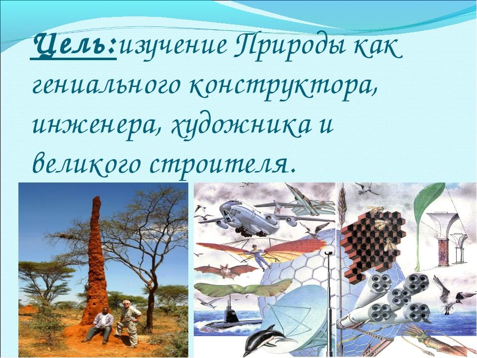 Цель:изучение Природы как гениального конструктора, инженера, художника и вел...