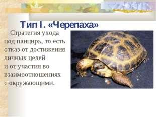 Тип I. «Черепаха» Стратегия ухода под панцирь, то есть отказ от достижения ли