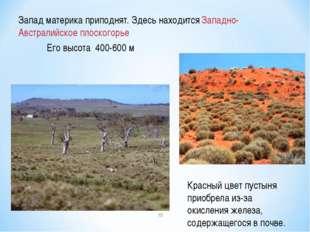 Красный цвет пустыня приобрела из-за окисления железа, содержащегося в почве.