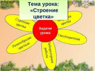 Лабораторная работа Формула цветка Разнообразие цветков Тема урока: «Строение