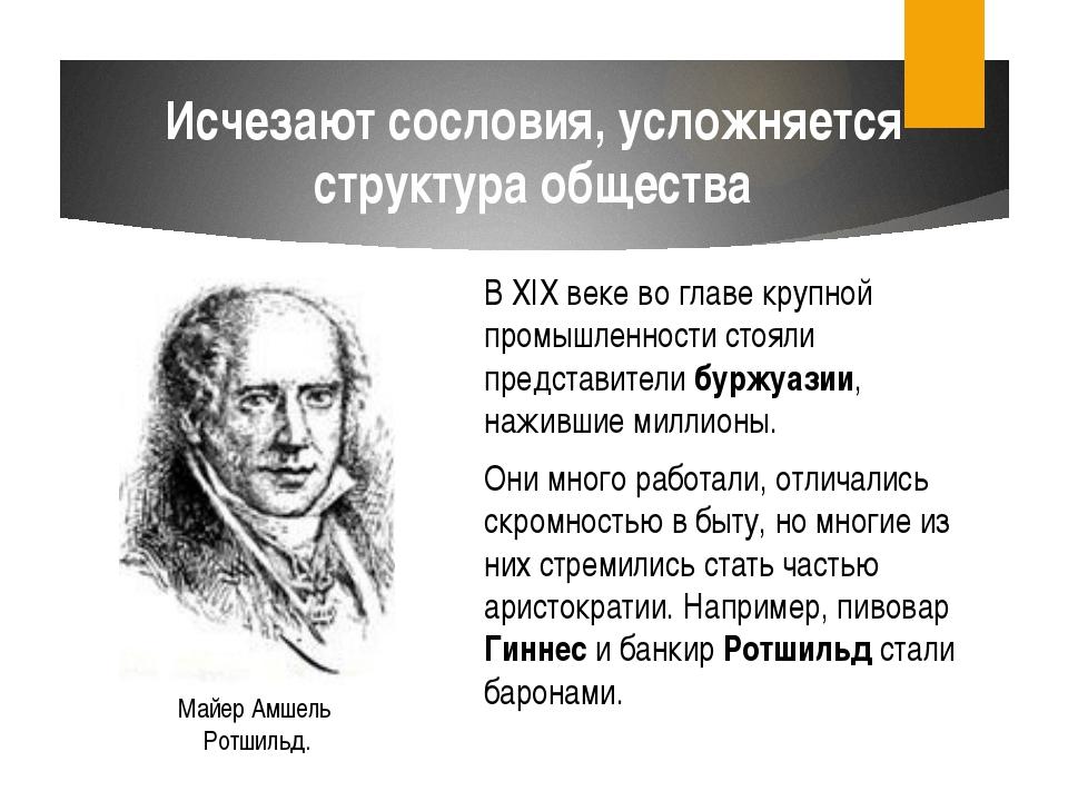 В XIX веке во главе крупной промышленности стояли представители буржуазии, на...