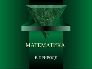 МАТЕМАТИКА В ПРИРОДЕ