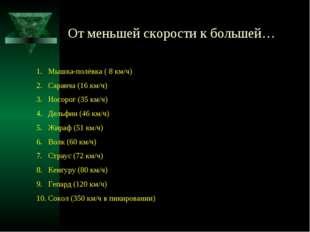 От меньшей скорости к большей… Мышка-полёвка ( 8 км/ч) Саранча (16 км/ч) Носо