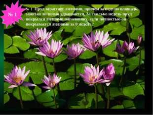 № 1 Пруд зарастает лилиями, причём за неделю площадь, занятая лилиями удваива
