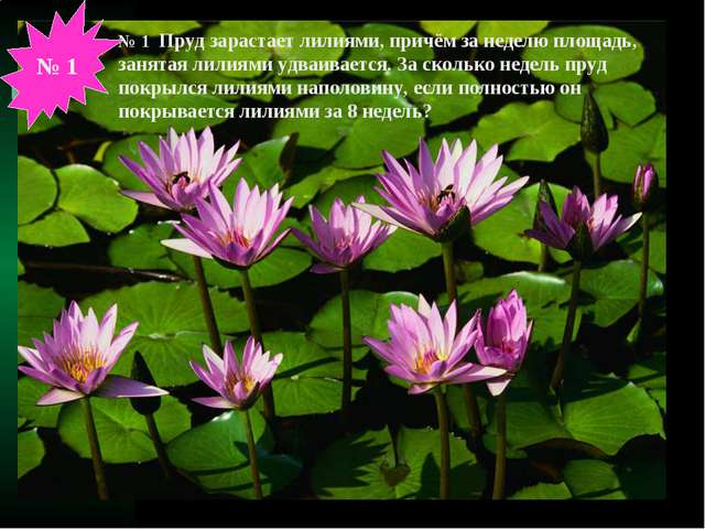 № 1 Пруд зарастает лилиями, причём за неделю площадь, занятая лилиями удваива...