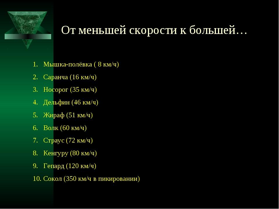 От меньшей скорости к большей… Мышка-полёвка ( 8 км/ч) Саранча (16 км/ч) Носо...