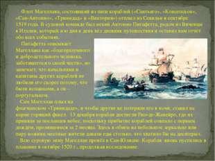 Флот Магеллана, состоявший из пяти кораблей («Сантьяго», «Консепсьон», «Сан-