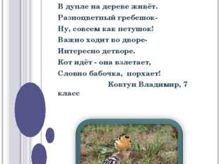КОНКУРС НА ЛУЧШЕЕ СТИХОТВОРЕНИЕ Изящная птица удод В дупле на дереве живёт. Р