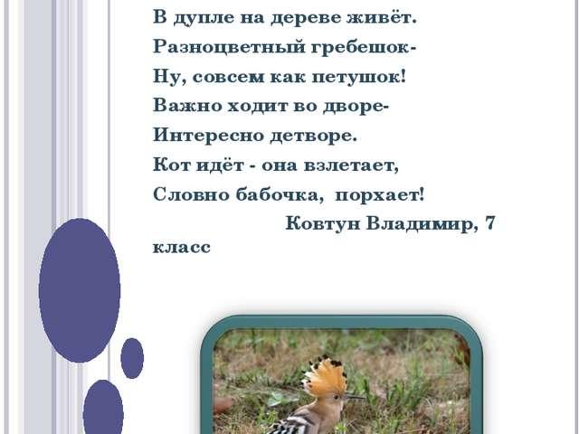 КОНКУРС НА ЛУЧШЕЕ СТИХОТВОРЕНИЕ Изящная птица удод В дупле на дереве живёт. Р...