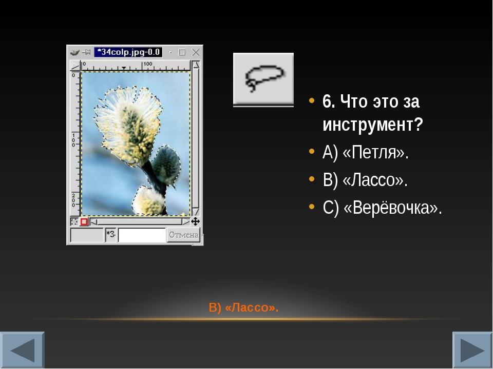 6. Что это за инструмент? А) «Петля». В) «Лассо». С) «Верёвочка». В) «Лассо».