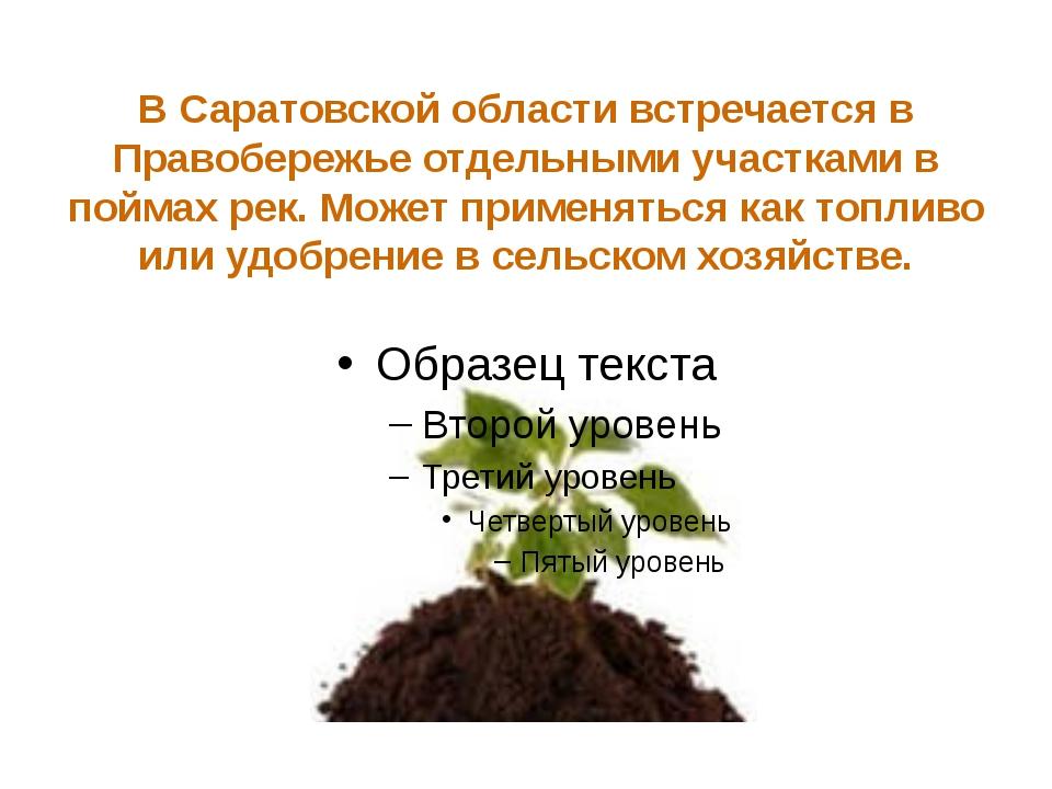 В недрах Соколовой горы и в посёлке Елшанка у Саратова, около Энгельса и у Ча...
