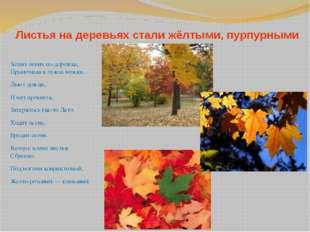 Листья на деревьях стали жёлтыми, пурпурными Ходит осень по дорожке, Промочил