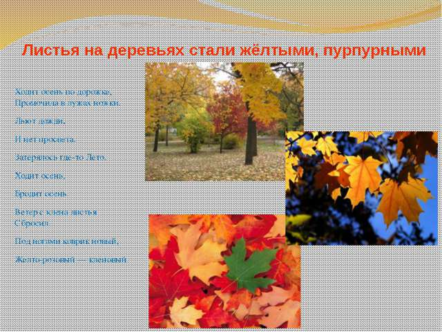 Листья на деревьях стали жёлтыми, пурпурными Ходит осень по дорожке, Промочил...