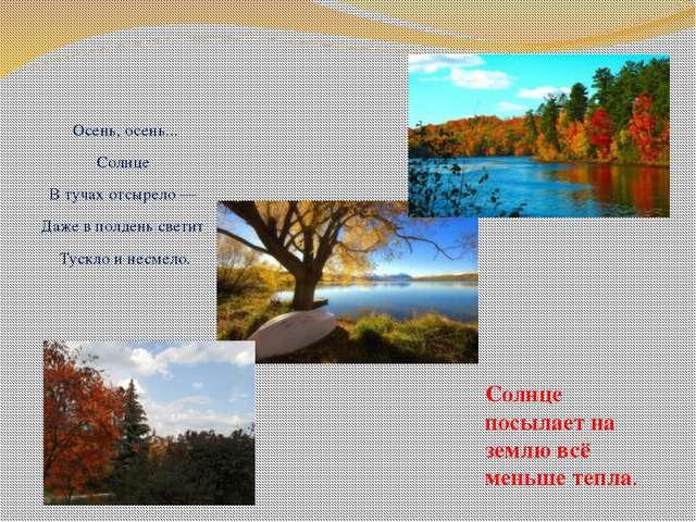 Осень, осень... Солнце В тучах отсырело — Даже в полдень светит Тускло и несм...