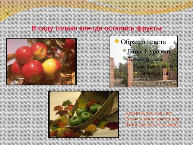 В саду только кое-где остались фрукты Сперва белое, как снег, После зелёное,...