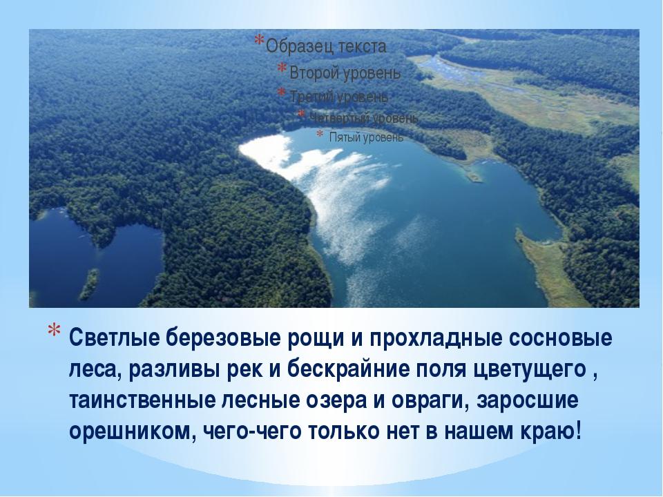 Светлые березовые рощи и прохладные сосновые леса, разливы рек и бескрайние п...